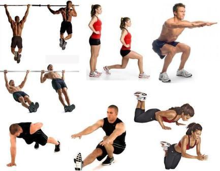 Muscle Building Resistance Band Workout